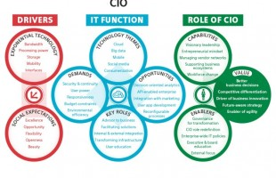 What leadership skills are required in CIO?